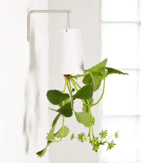 pots-jardin-suspendus-63187-2968465