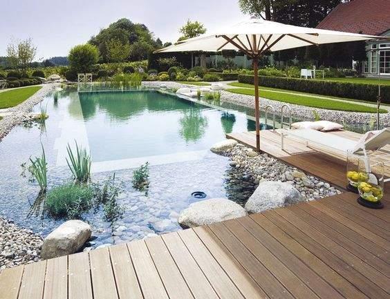 piscine naturelle inspiration