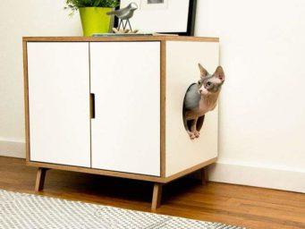 Litière de chat: 3 techniques et pleins d'idées pour mieux la cacher