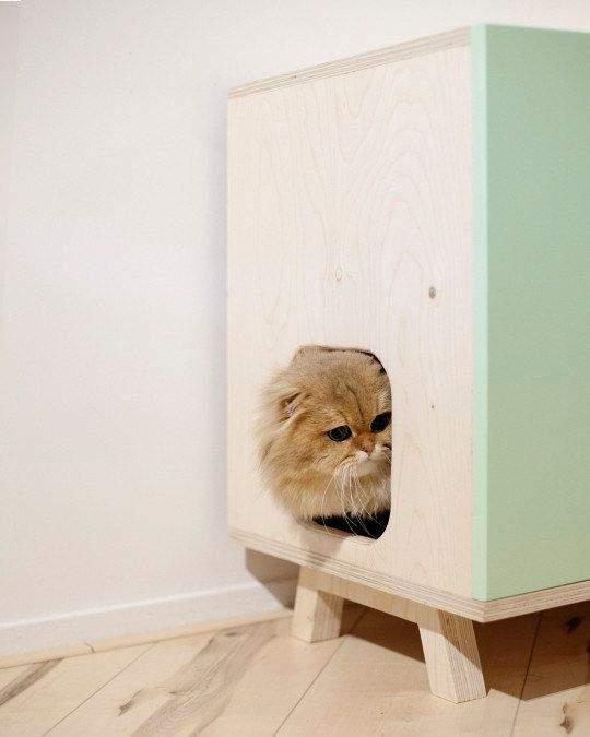 liti re de chat 3 techniques et pleins d 39 id es pour mieux la cacher. Black Bedroom Furniture Sets. Home Design Ideas