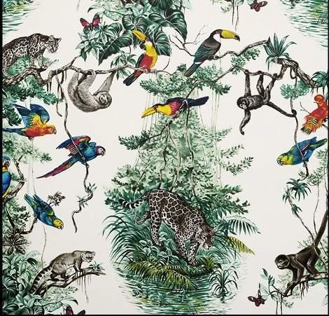 equateur-wallpaper-robert-dallet-in-zenith