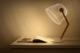 Bulbing, la lampe à poser