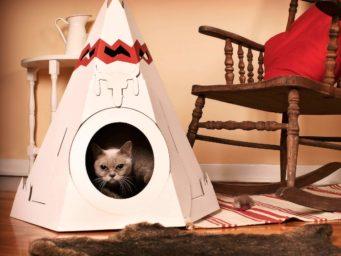 'Loyal Luxe' : collection chic pour nos amis les bêtes