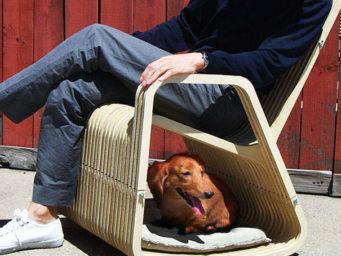6 meubles designs et malins pensés pour vos animaux