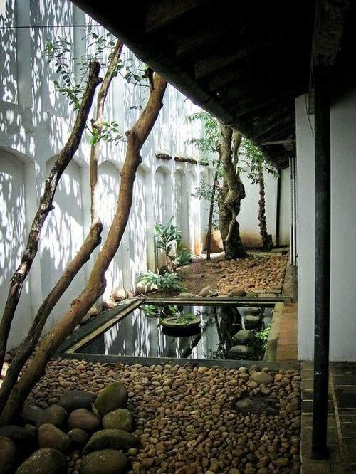 le-tropical-une-valeur-sure-pour-vos-interieurs-et-exterieurs