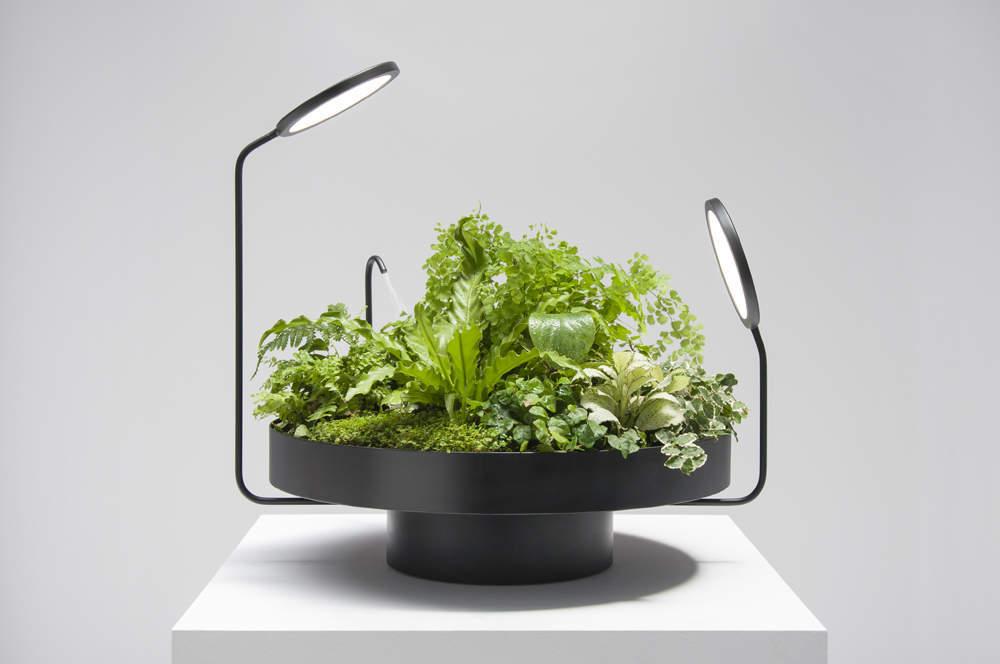 des-lampes-qui-vont-revolutionner-vos-plantes