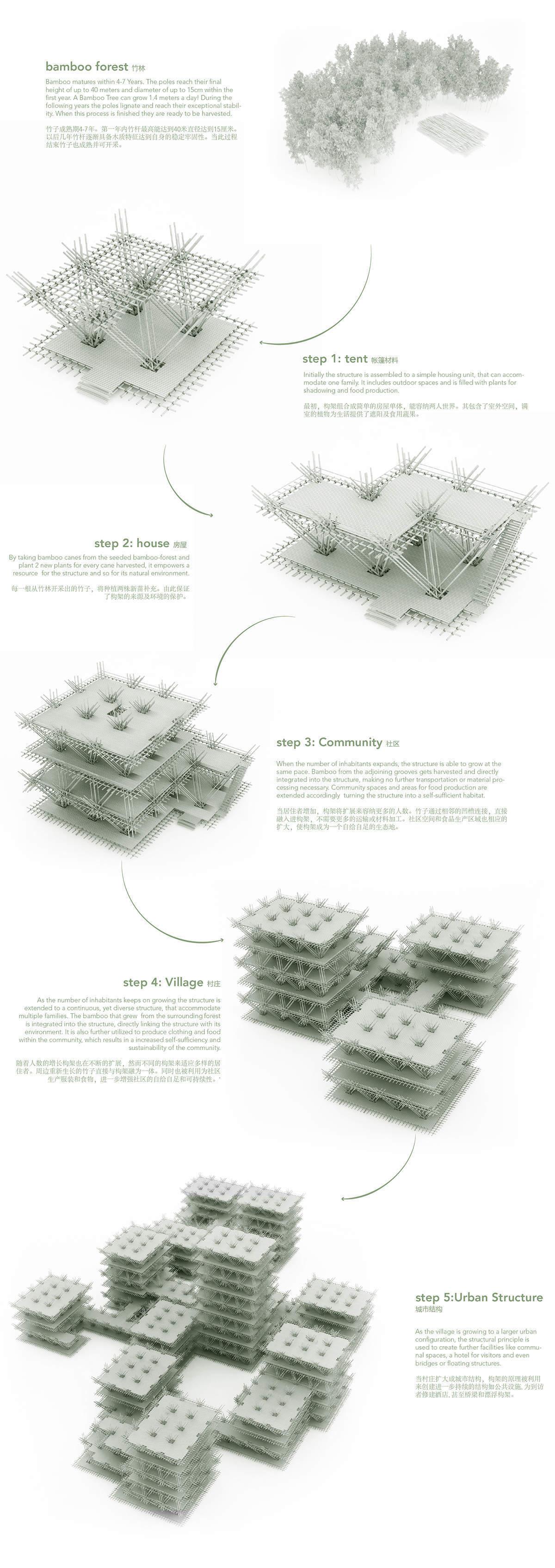 Les étapes de la structure en bambou