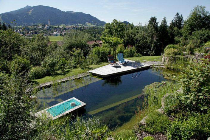 Une piscine dans la verdure