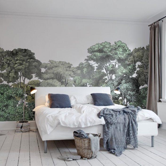 jungle et cime des arbres