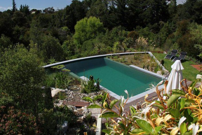 piscine ecologique en nouvelle-zelande inspiration piscines naturelles