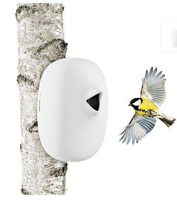 Maison d'oiseau Nesting Box