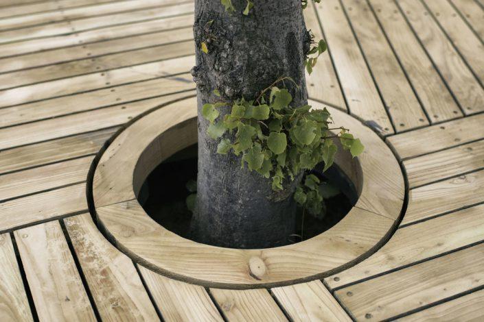 Sur le prototype d'ile, il y a un arbre
